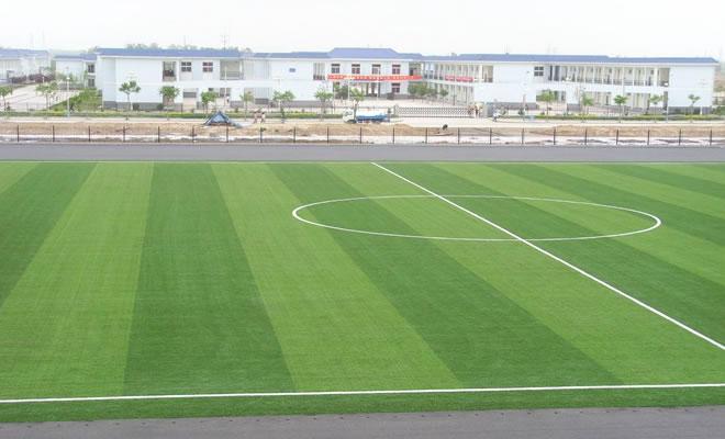 足球场人造草坪工程质量检验要求方案