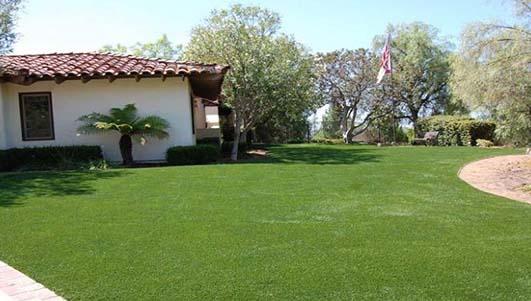 别墅绿化人造草坪14元起
